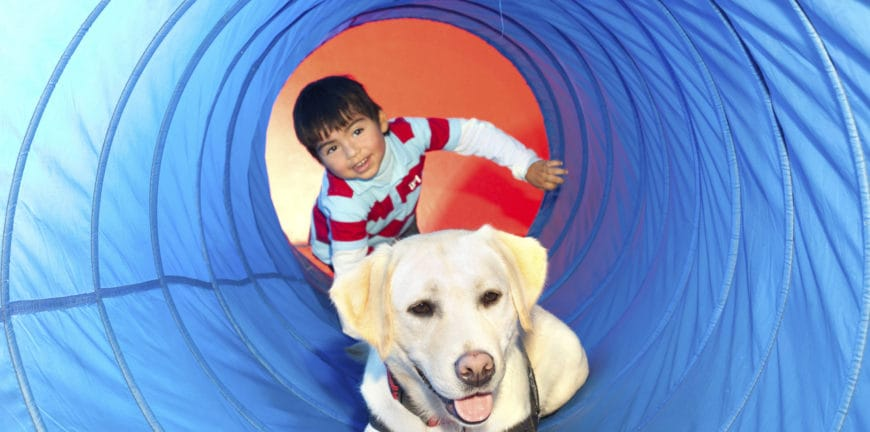 Child and Lab pup playing in a tunnel
